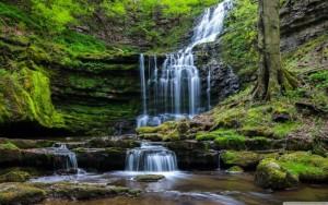 moss_waterfall_rocks-wallpaper-2880x1800
