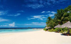 palm_trees_on_ocean